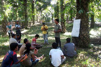 2016-08-18-smallholder-project-indonesia-training-west-kalimantan.jpg